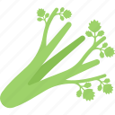 bok, choy, food, greenery, vegetables icon