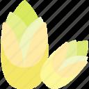 corn, food, greenery, sheet icon