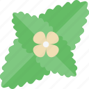 flower, food, greenery, vegetables icon