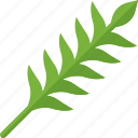 food, greenery, sheel, stalk icon
