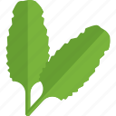 food, greenery, sheet, stalk, vegetables icon