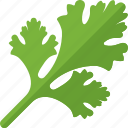 food, green, greenery, sheet, vegetables