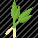 food, greenery, onion, stalk icon