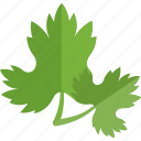 food, greenery, parsley, sheet icon