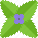 flower, food, greenery, purple icon