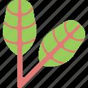 food, greenery, maroon, sorrel icon