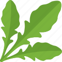 green, greenery, sorrel, vegetables icon