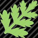 food, greenery, sheet, stalk icon