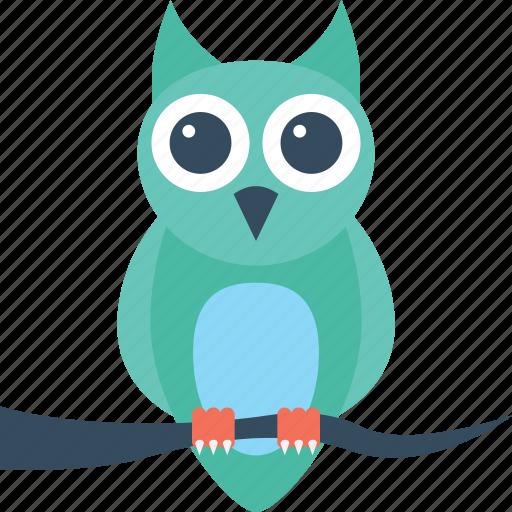 dreadful, fearful, halloween owl, horrible, scary icon