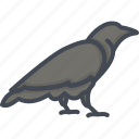 animal, halloween, holiday, raven icon