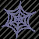 network, spider, web icon