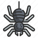 animal, halloween, horror, scary, spider, spooky icon