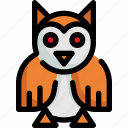 animal, animals, bird, owl, wild