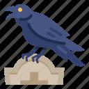 graveyard, halloween, crow, animal, bird, night, grave