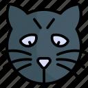 cat, animal, pet, kitten, cute, kitty, face