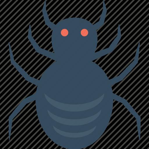 frightening, halloween spider, scary, spider, web spider icon