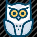 animal, bird, halloween, night, owl