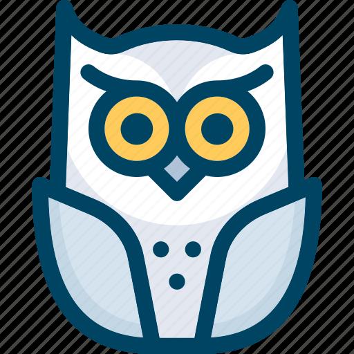 animal, bird, halloween, night, owl icon