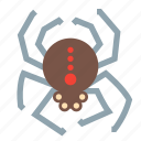 halloween, spider, evil, horror, scary, spooky