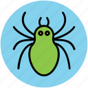 arachnid, bug, halloween spider, insect, spider icon