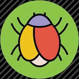 animal, arachnid, bug, insect, ladybird, ladybug icon