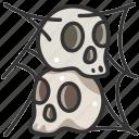 death, halloween, horror, skull, spider web, spooky, terror icon