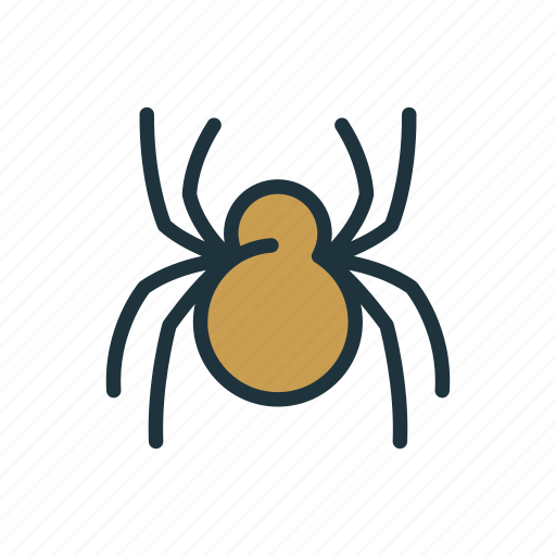 halloween, insect, scary, spider, spook, web icon