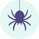 carnival, event, festive, halloween, party, spider icon