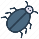 ant, bee, bug, insect icon