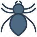 ant, arachind, insect, spider icon