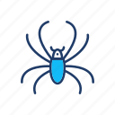 arachind, bug, insect, spider icon