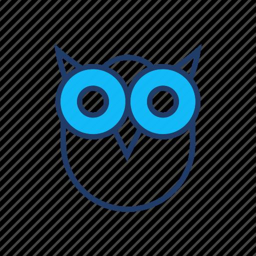 bird, fly, owl, scary icon
