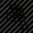net, spider, web icon