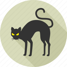 animal, animals, black cat, cat, halloween, nature, wild icon