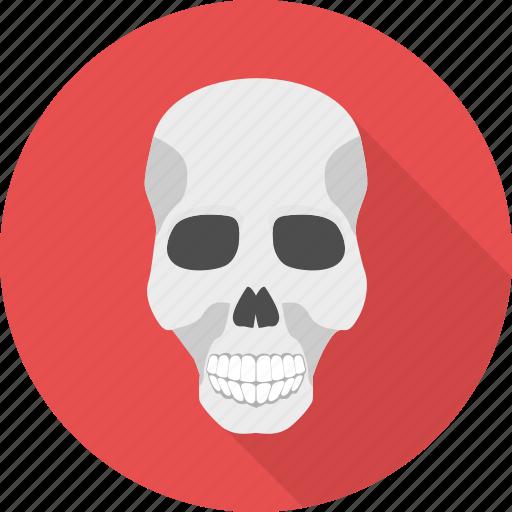caution, danger, hazard, poison, sign, skeleton, skull icon