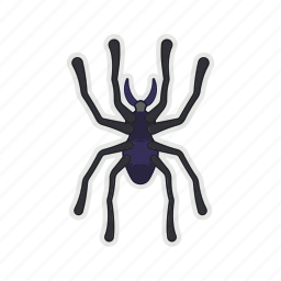 bug, halloween, poison, spider icon