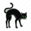 black cat, halloween, scary, unluck icon