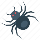 arachnid, halloween spider, insect, spider icon
