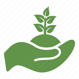 ecologic, gardening, hand, herbal, leaf, nature, plant icon