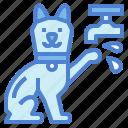 animal, cat, cleaning, hand, hand washing, washing
