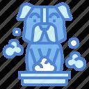 animal, cleaning, dog, hand, hand washing, washing