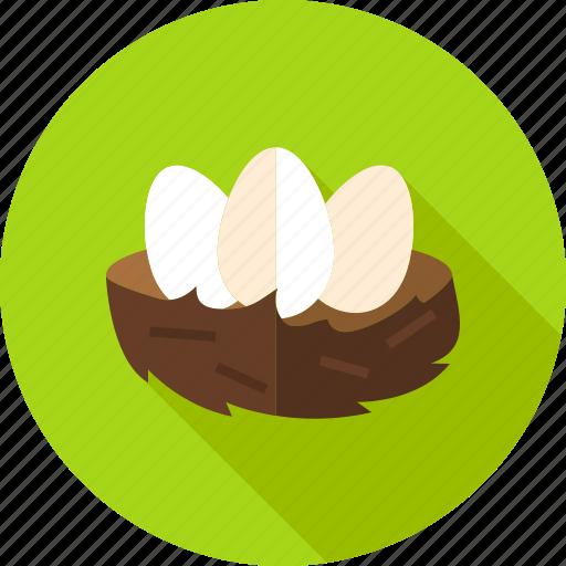 bird, chicken, easter, egg, food, hen, nest icon