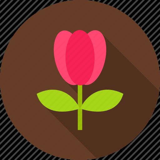 floral, flower, nature, season, seasonal, spring, tulip icon