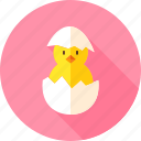 animal, bird, chick, chicken, egg, farm, hen icon