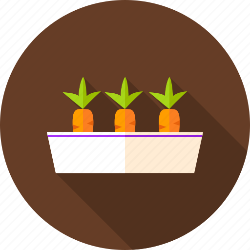 carrot, flower pot, gardening, nature, pot, season, vegetable icon
