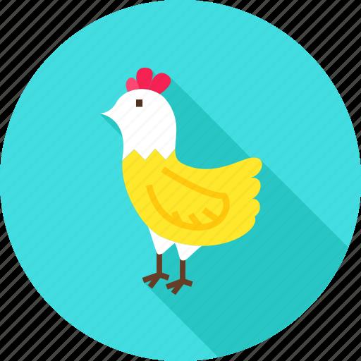 animal, bird, chicken, farm, hen, nature icon
