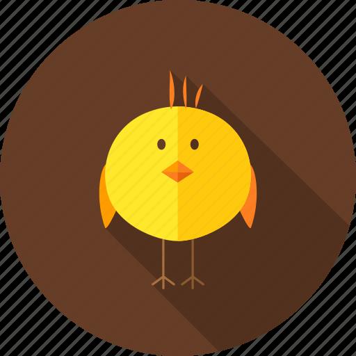 animal, bird, chick, chicken, farm, hen, nature icon