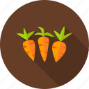 carrot, food, garden, nature, organic, vegetable, vegetarian icon