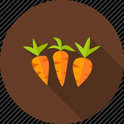 carrot, food, garden, nature, organic, vegetable, vegetarian icon