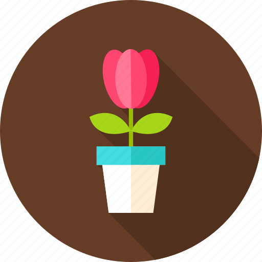 flower, flower pot, nature, pot, seasonal, spring, tulip icon
